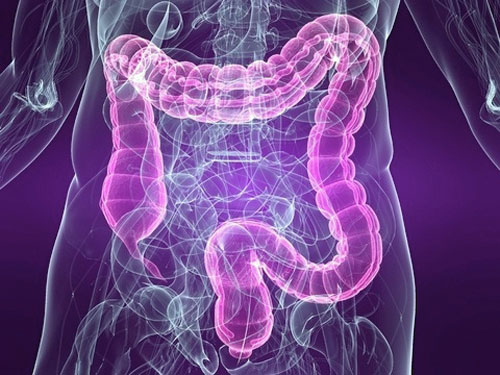 Take The Leaky Gut Syndrome Quiz Today