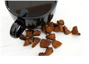 The Excellent Features Of The Chaga Mushroom Tea