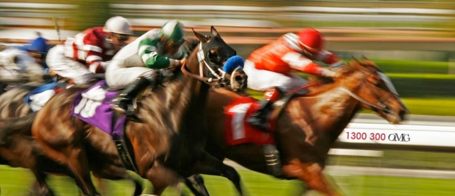 Must Visit Racecourses